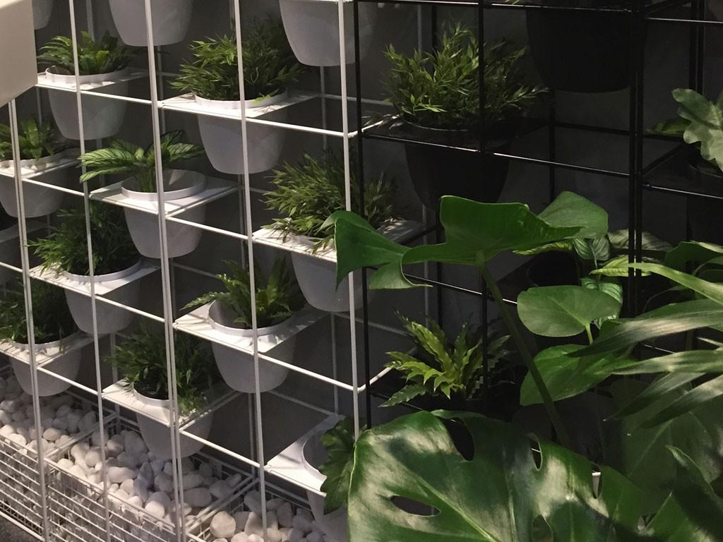Balcony Plant Wall