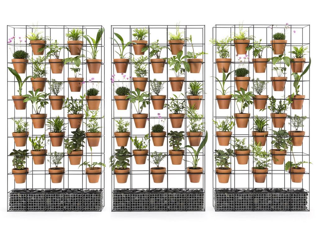 Plant Walls