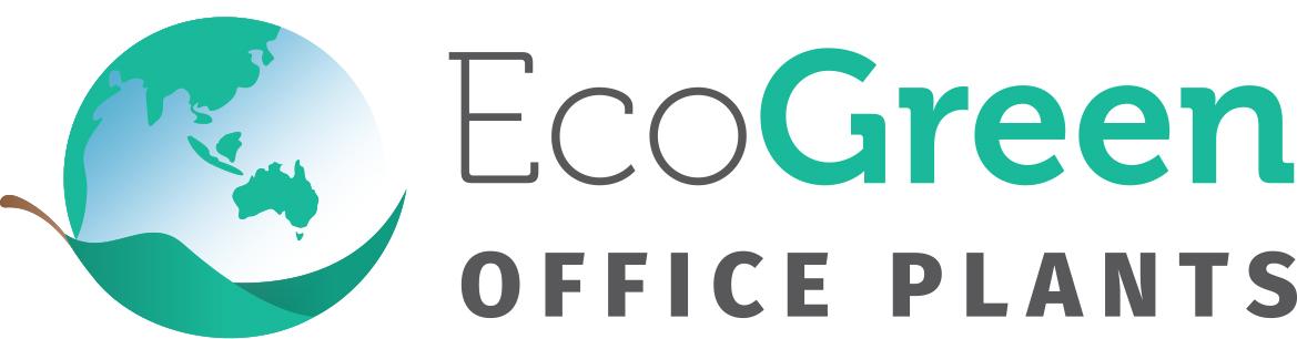 Eco Green Office Plants