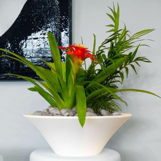 Desktop Planters – Cone Bowl