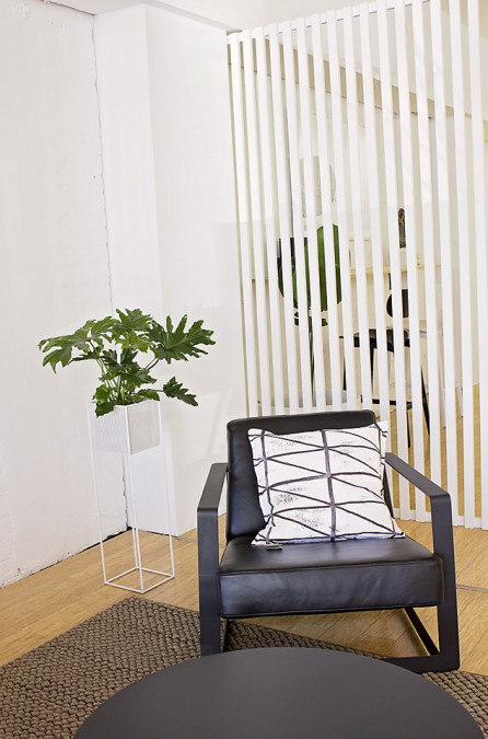 Philodendron, indoor plant, plant hire Melbourne, eco green office plants