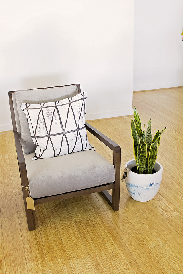 Sansevieria, Mother in laws tongue, snake plant, indoor plant, Melbourne, houseplant, droutolerant, eco green office plantsght