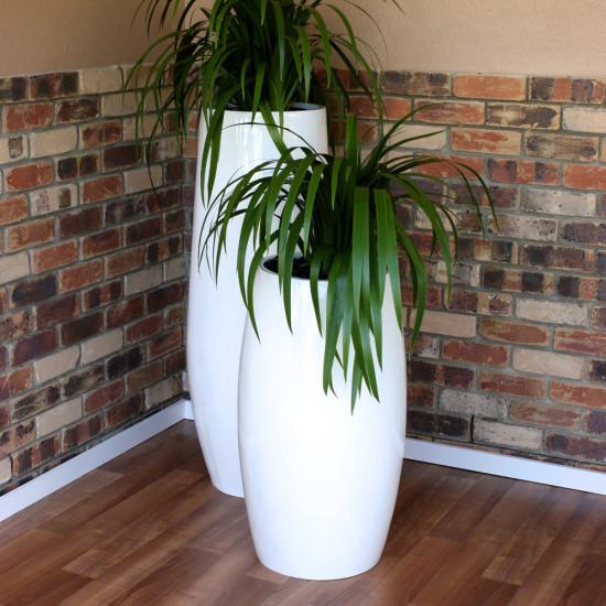 Indoor Plant Hire Plant Hire Melbourne Ecogreen Plants