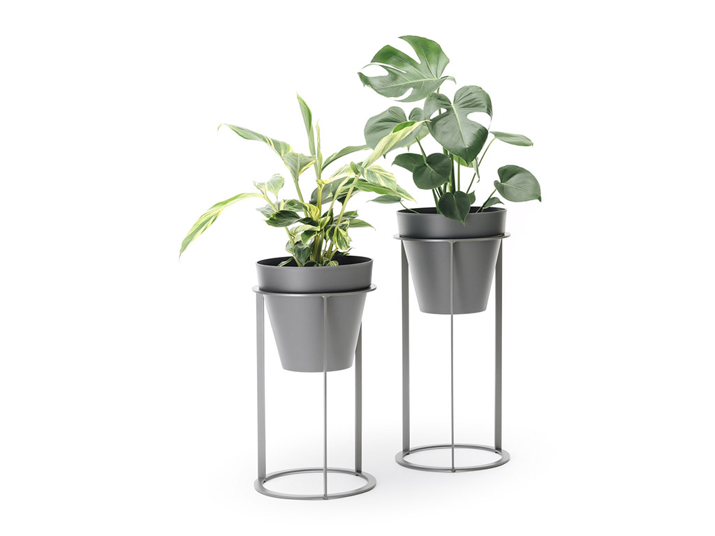 Other Planters Eco Green Office Plants
