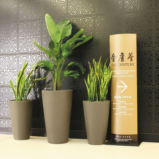 modern office plants. Bring Style And Class To Your Workplace With Modern Pots Beautiful Lush  Plants. Office Plants