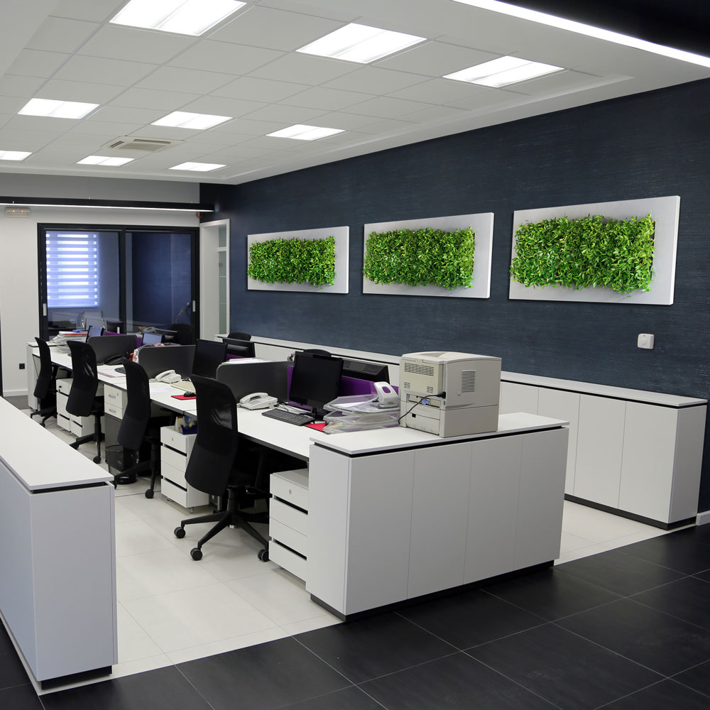 office wall frames. Plant Walls And Live Wall Art Office Frames