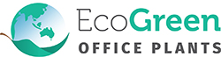 Eco Green Office Plants